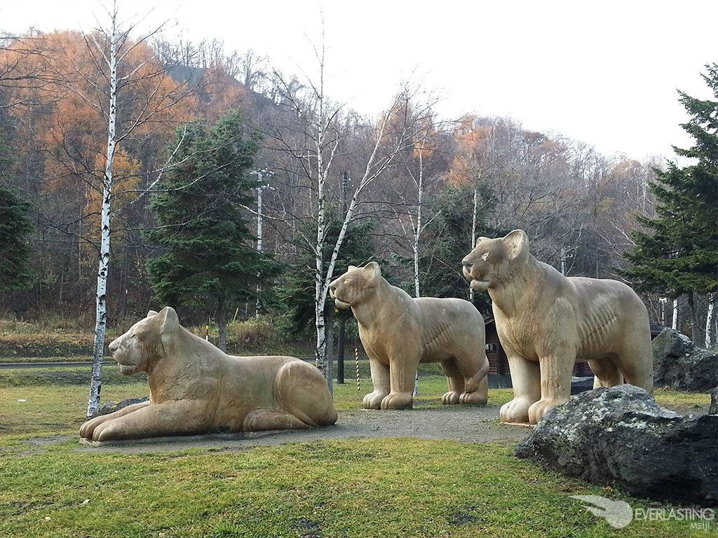 Toya Lions